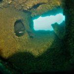 Buceo en Pecios con Portosub